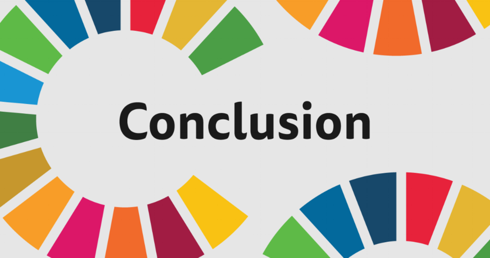 Conclusion and other SDSN Resources - Learn more about SDG.guide and explore additional resources from the SDSN.