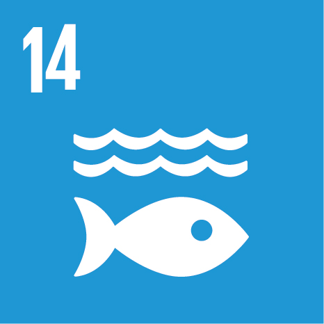 E_SDG_Icons_NoText-14.jpg