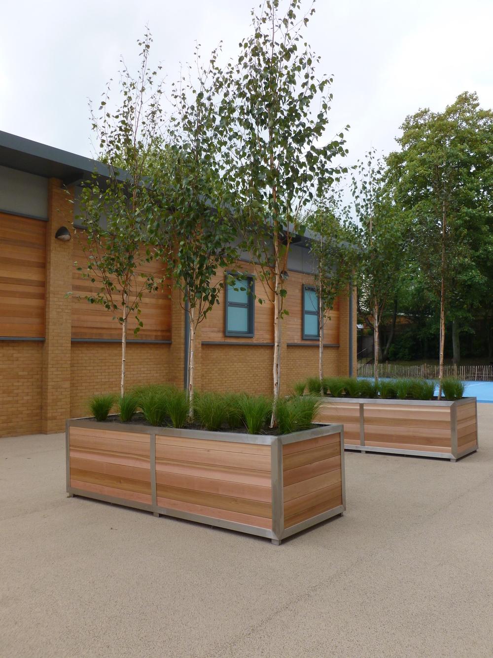 new-bridge-house-plantcare-exterior-plants-trees-bristol-cardiff-image-1