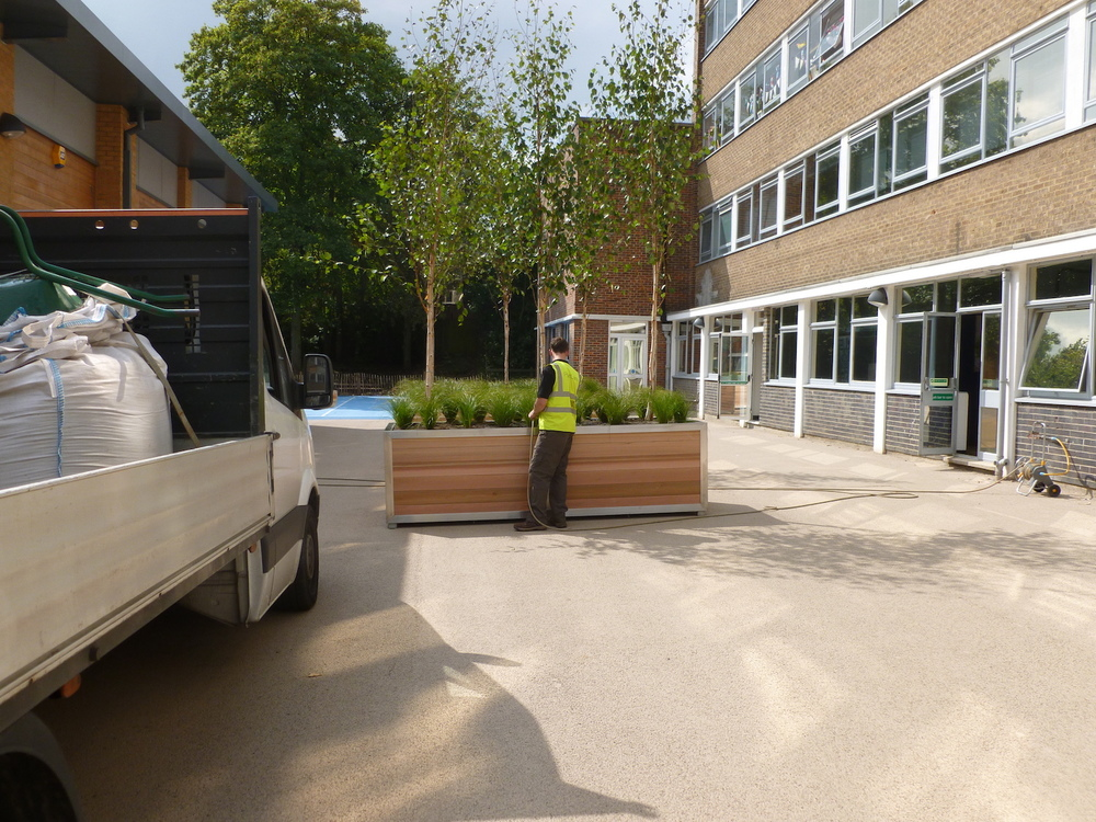 new-bridge-house-plantcare-exterior-plants-trees-bristol-cardiff-image-3