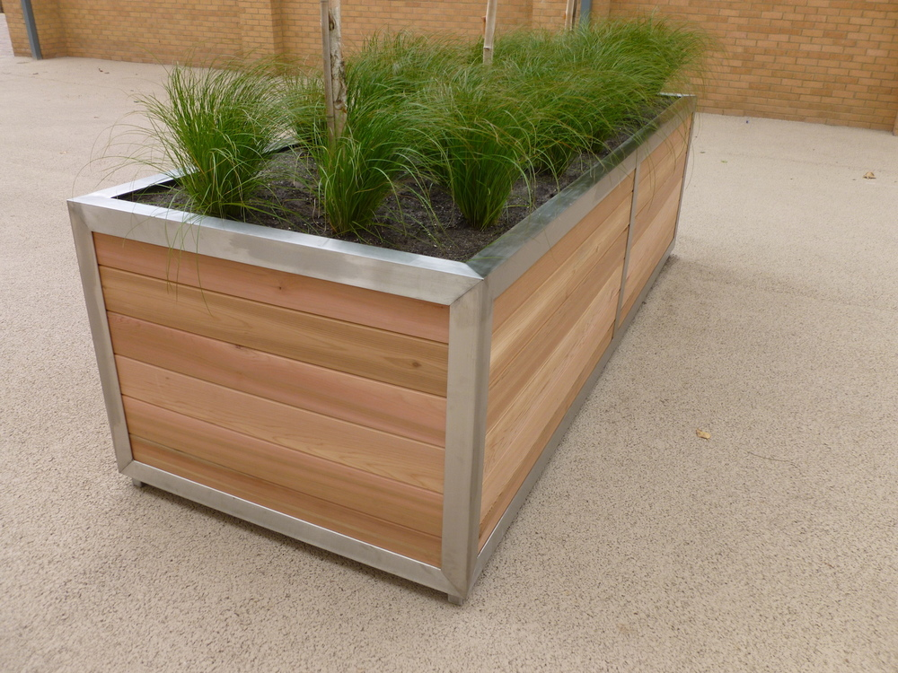new-bridge-house-plantcare-exterior-plants-trees-bristol-cardiff-image-4