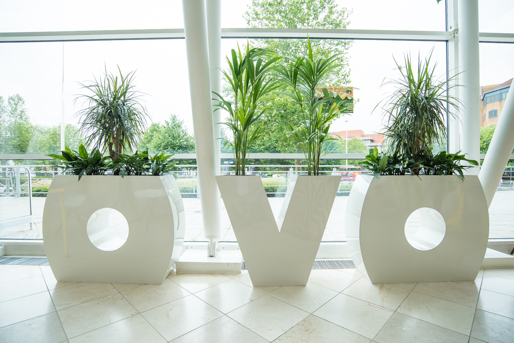 ovo-energy-plantcare-interior-plants-office-eco-friendly-trees-bristol-cardiff-image-1