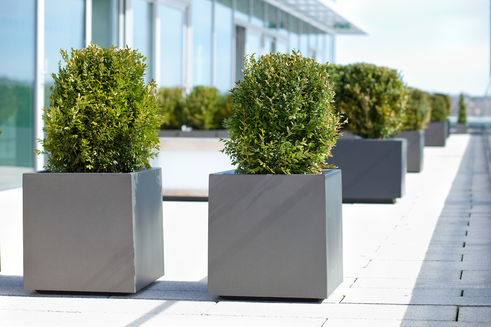 exterior-plant-displays-plantcare-bristol-cardiff-furniture-terrace-corporate-office-workspace-3