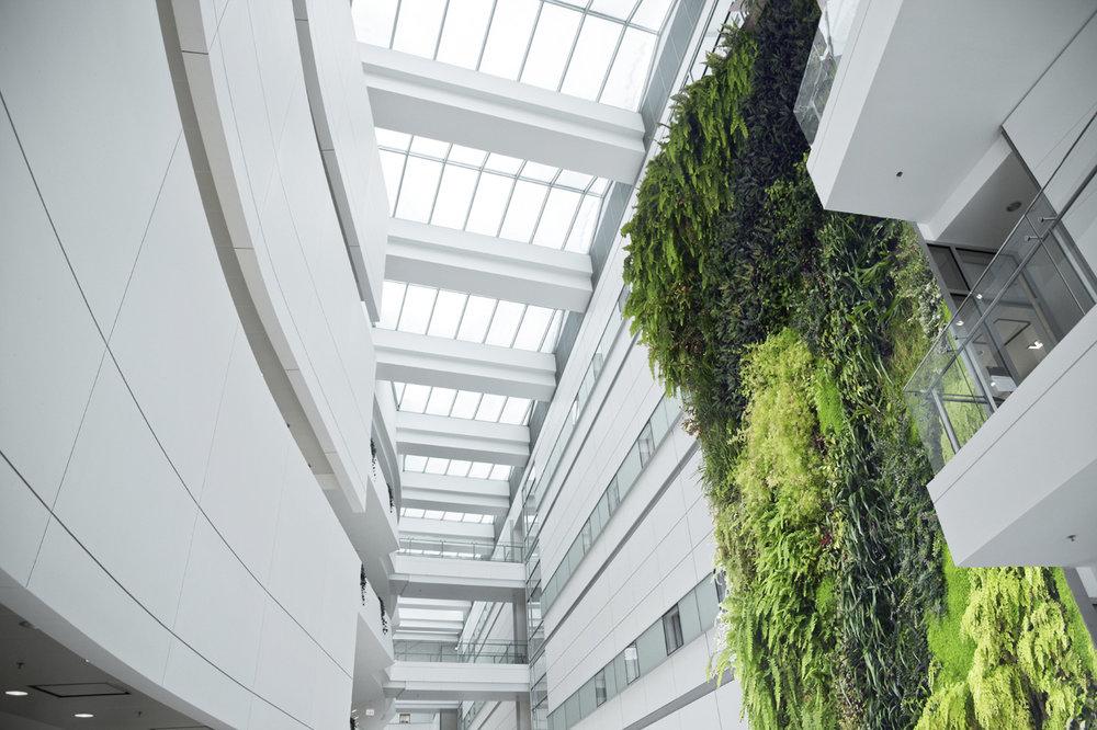 03 Living Wall Interior Design Vancouver Green Wall.