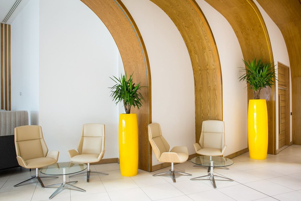 Interior Plants -