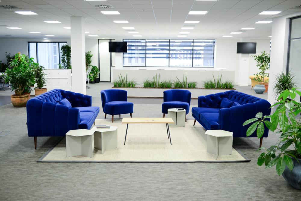 ovo-energy-2-plantcare-interior-plants-office-eco-friendly-trees-bristol-cardiff-image-9