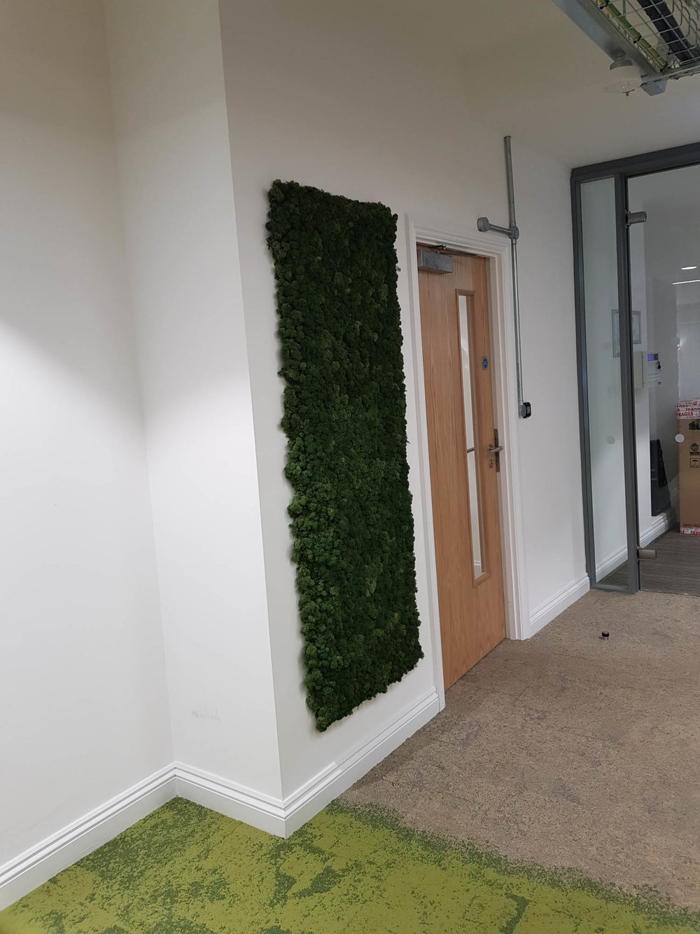 cookpad-interior-plants-mosswalls-branded-planters-plantcare-bristol-image-2