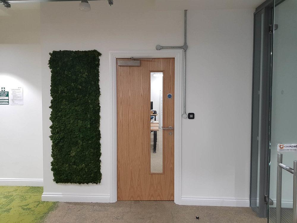 cookpad-interior-plants-mosswalls-branded-planters-plantcare-bristol-image-3