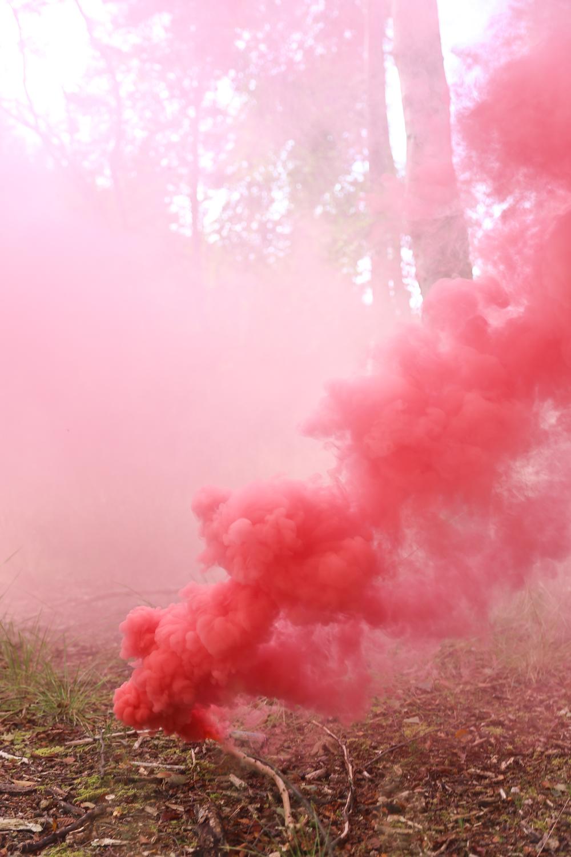 IMG_6891_Smoke_shoot_Rachael_Sture_Photography_3-10-16_.jpg