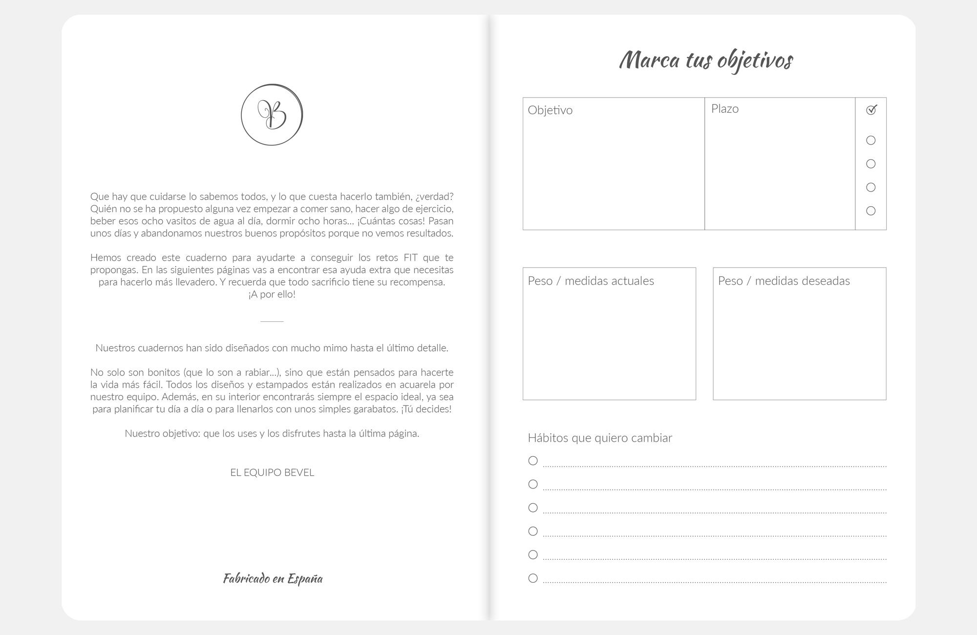 Fantástico Planificador Reanudar Objetivo Ideas - Ejemplo De ...