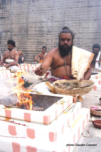Vedic Fire Ritual4.jpg