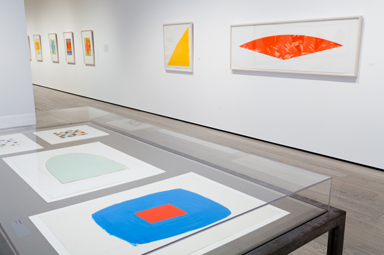 Ellsworth Kelly_exhibition1.jpg