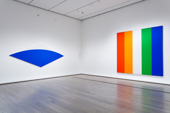 Ellsworth Kelly_exhibition4.jpg