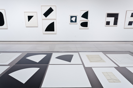 Ellsworth Kelly_exhibition5.jpg