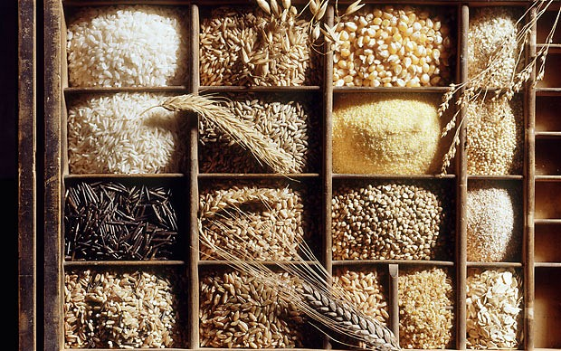Behind the Seed: Whole Grains -