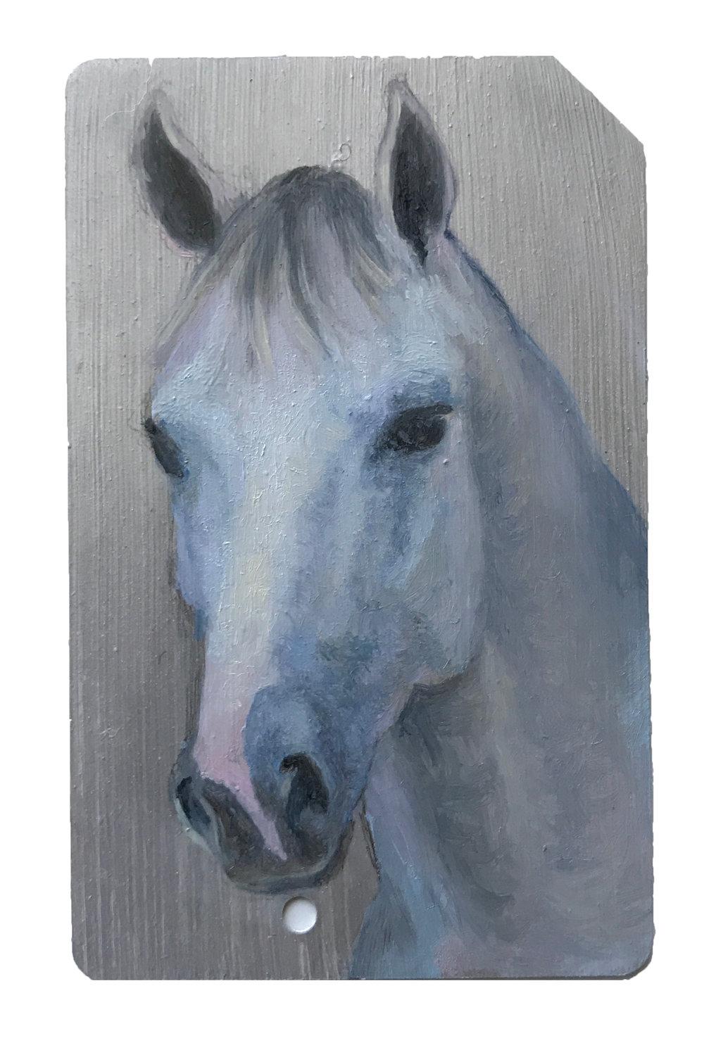 silver horse.jpg