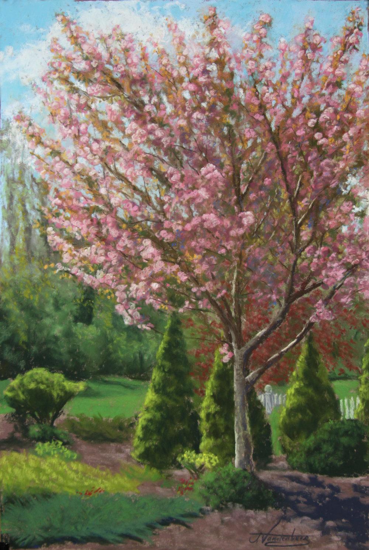 SpringTreeBloom.jpg