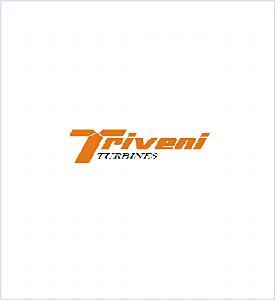 Triveni Turbine.png