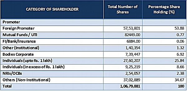 Shareholding Table 600X.jpg