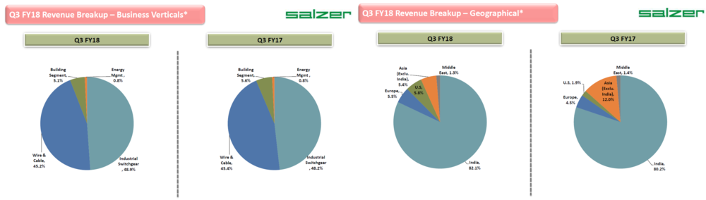 Salzer Q3FY18 Revenue Breakup.png