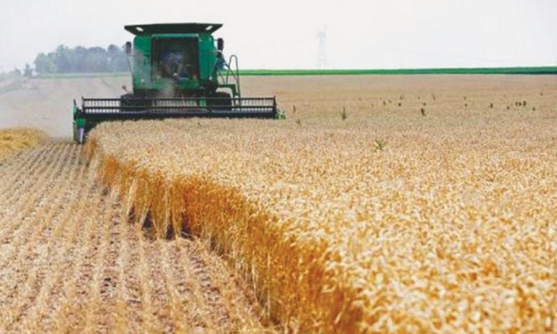 FarmSubsidyPhoto.jpg