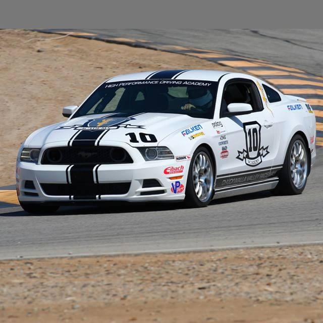 Mustang #10.jpg