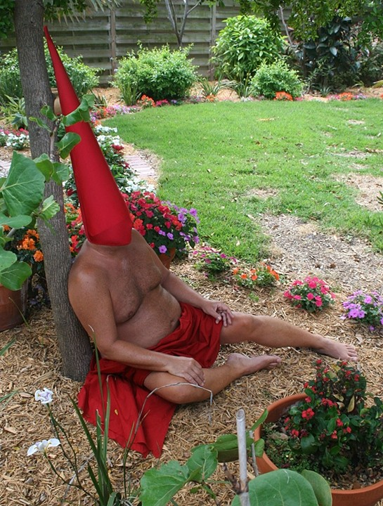 Paracelsus's vision of Tomte in the Garden 2, 2009 Digital Photograph  Archival Pigment Print, 20 x 18 inches.