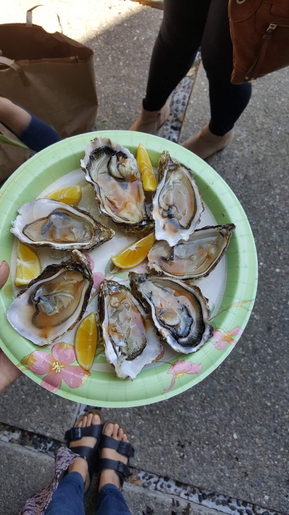 Everyone was crowded around the first batch of shucked oysters