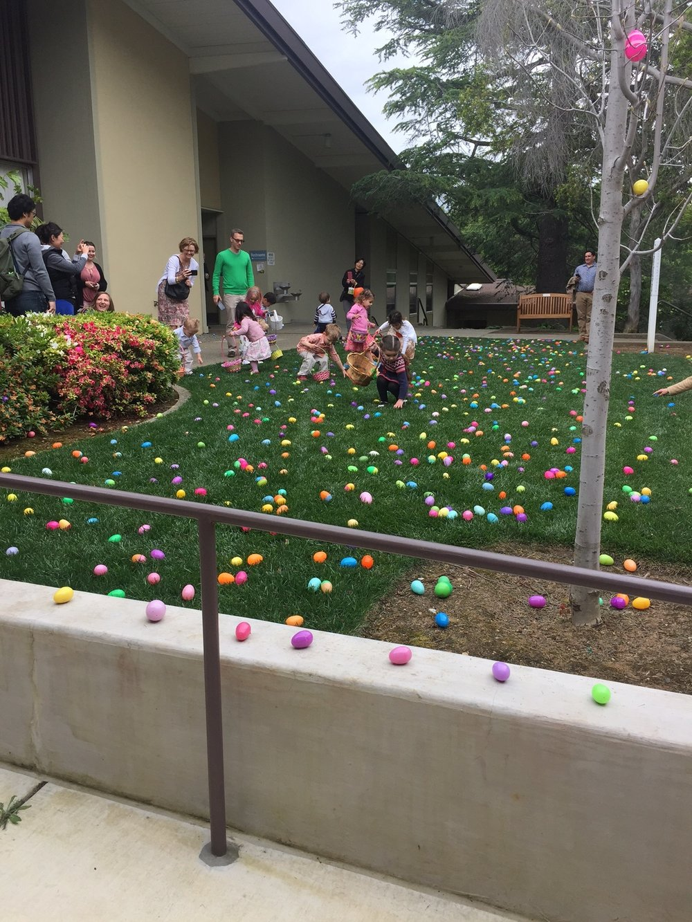 Easter egg Hunt - Sunday April 16, 2017