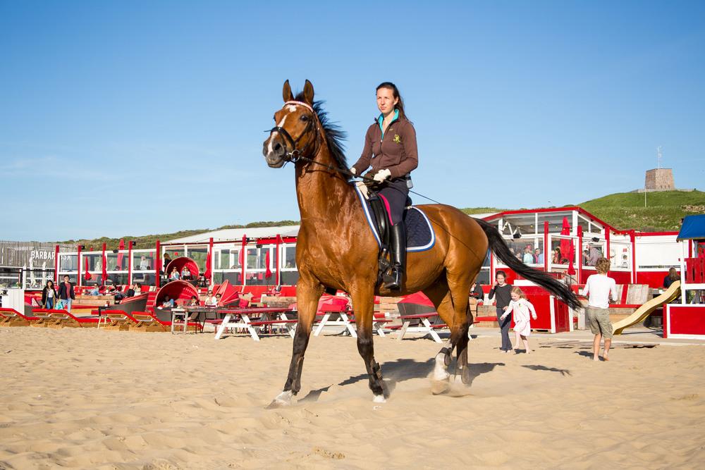 Beachclub Culpepper | Scheveningen-30.jpg