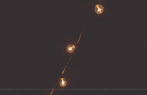 1085    Lumières bistro (50 pieds) / Bistro Lights (50 feet)    8