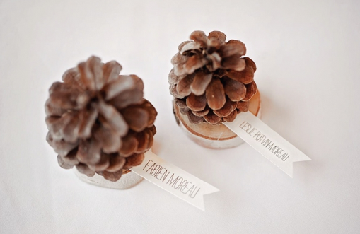 1041    Pomme de pins / Pinecone seating cards    100
