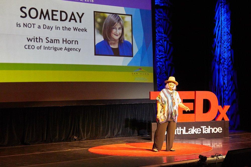 Ted-Ex Sam Horn 01.jpg