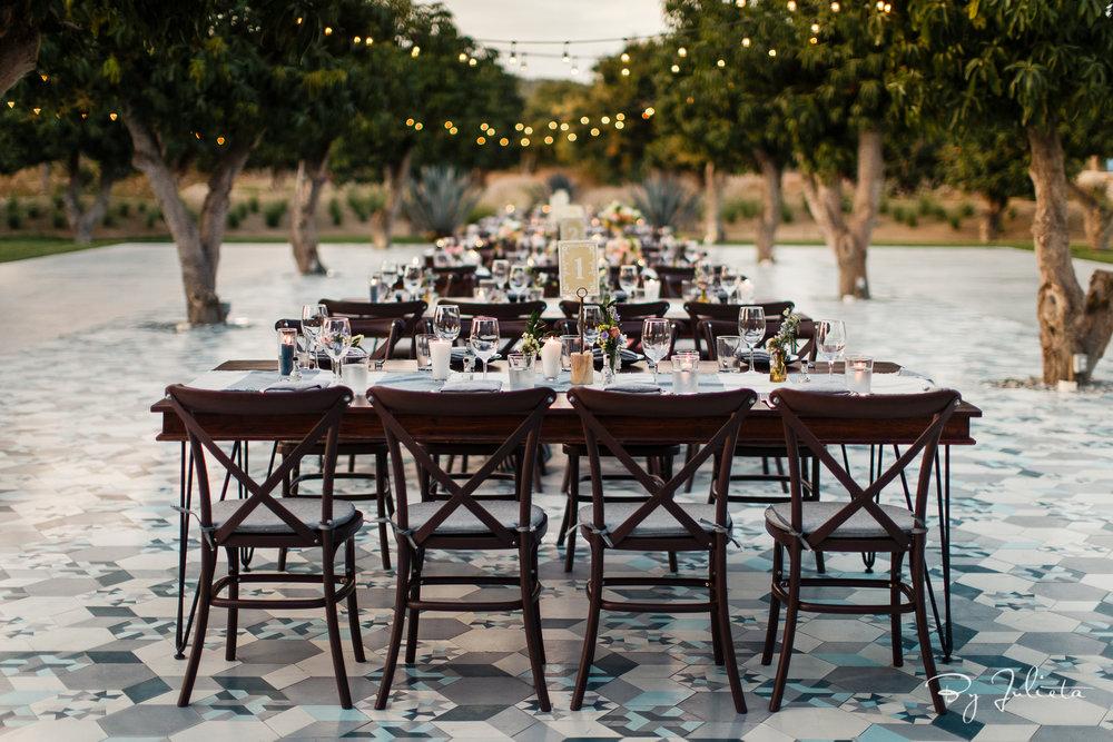 Acre Wedding Cabo. W+L. Julieta Amezcua Photography. (451 of 547).jpg