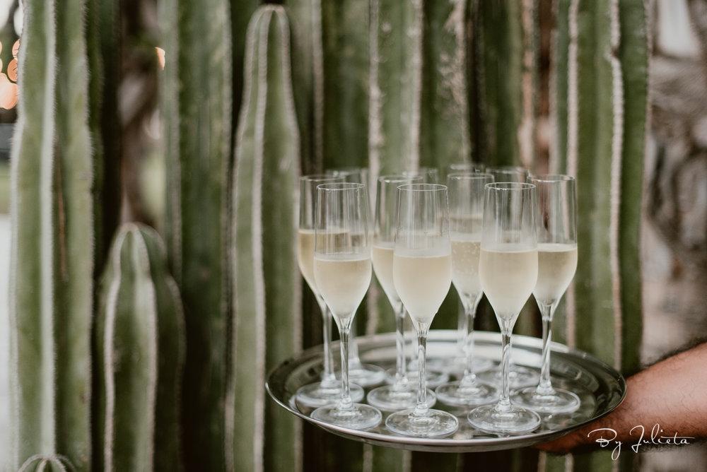 Acre Wedding Cabo. A+Z. Julieta Amezcua Photography. (369 of 681).jpg