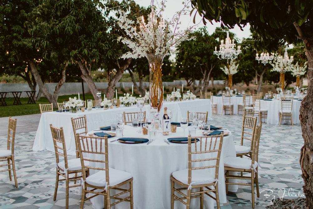 Acre Wedding Cabo. A+Z. Julieta Amezcua Photography. (504 of 681).jpg