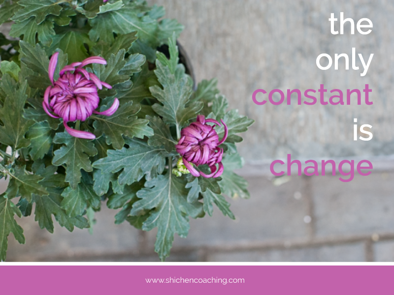 Only-Constant-is-Change-by-Shi-Chen