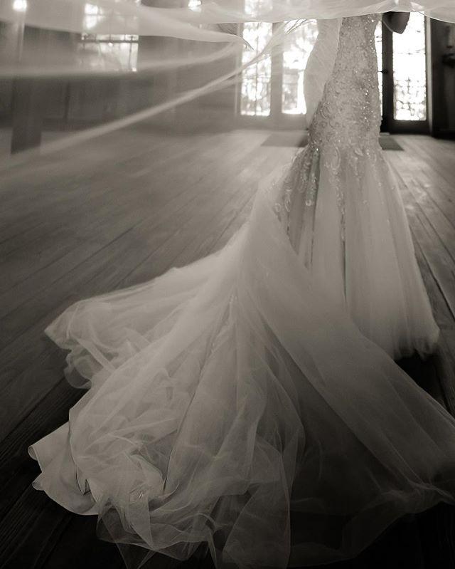 Nestldown | Los Gatos, CA | wedding #sppblackandwhitephoto #nestldown @nestldownevents @staceypentlandphoto @gerlie20