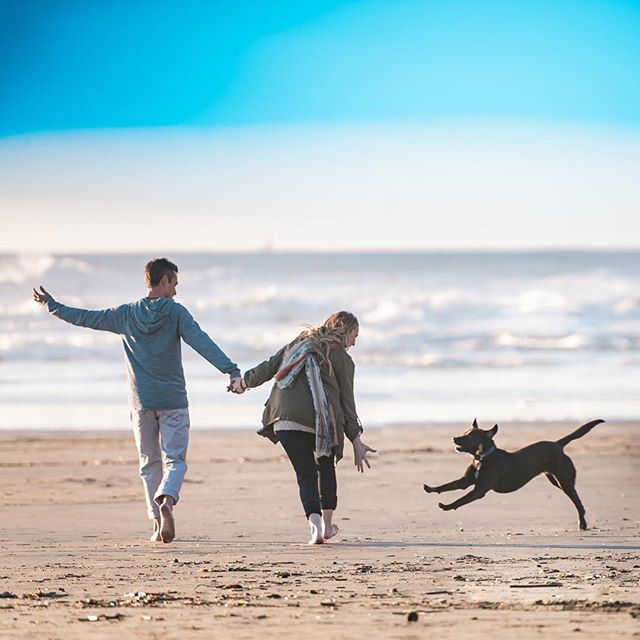 Feeling the pure joy and love of life of Charlie 🐶. More the online journal www.staceypentlandphotography.com/a-san-francisco-beach-doggie-engagement-session  Link in profile.