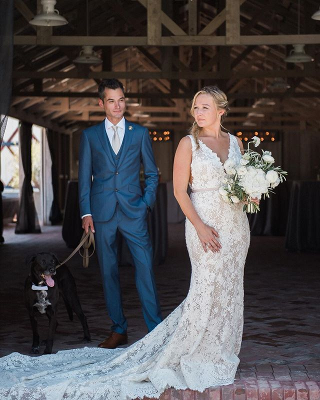These 3 look right out of a magazine... the dress, the hair, the look, the dog. More of this wedding on my journal. Link in bio. http://www.staceypentlandphotography.com/modern-farm-wedding