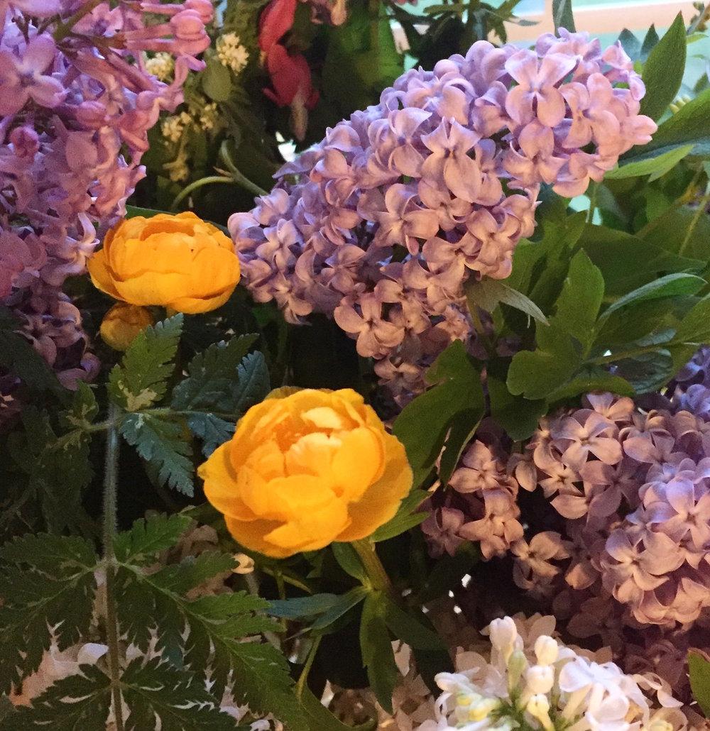 trollius & lilacs