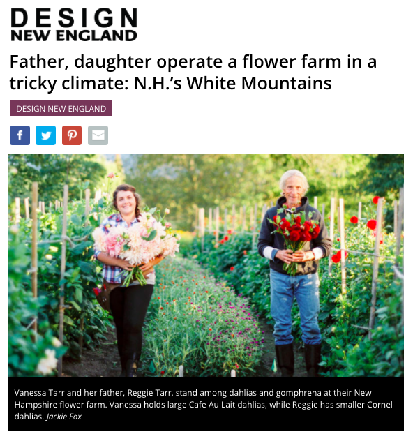 Tarrnation Flower Farm's feature on Boston.com.