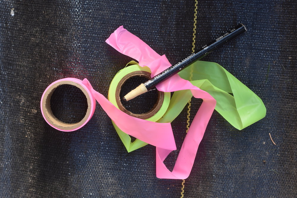 Neon flagging tape and Sharpie Peel Off China Marker