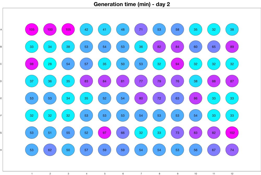 Generation time for day - 2.jpg