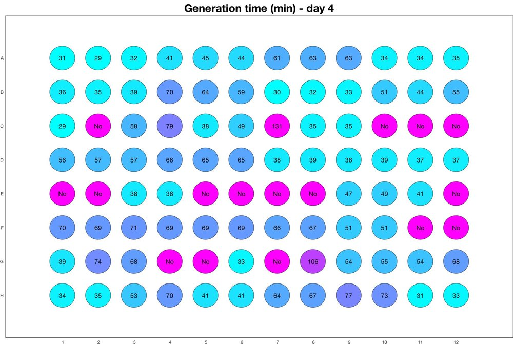 Generation time for day - 4.jpg