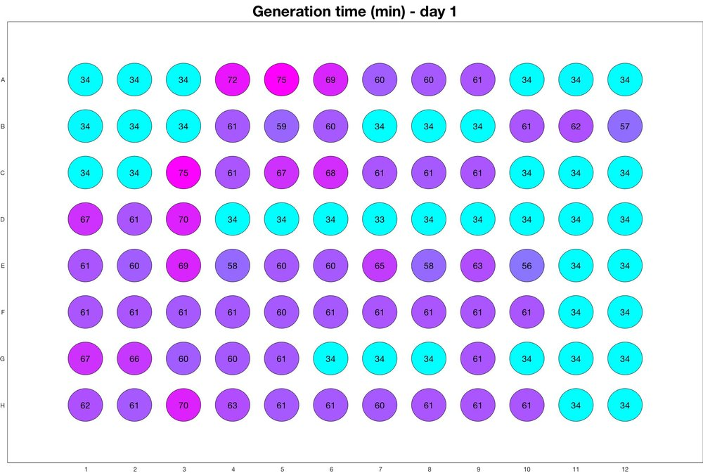 Generation time for day - 1_adjusted_for_CIP_death.jpg
