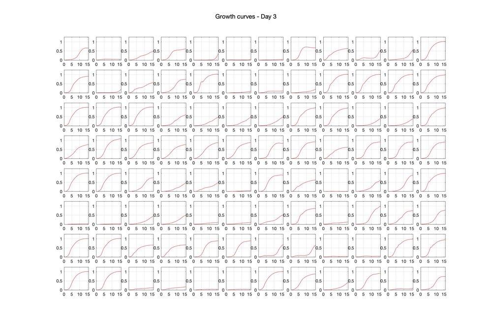 Optical density (16hr) - Day 3.jpg
