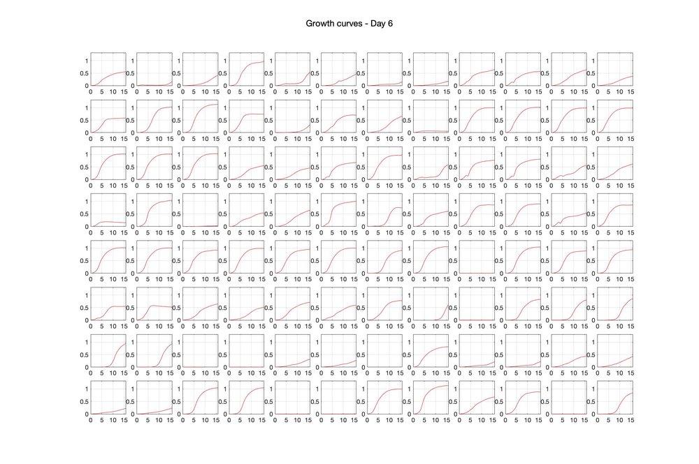 Optical density (16hr) - Day 6.jpg