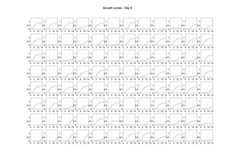 Optical density (16hr) - Day 9.jpg