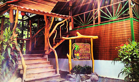 Our main stay will be at the Cashew Hill Jungle Lodge in Puerto Viejo.
